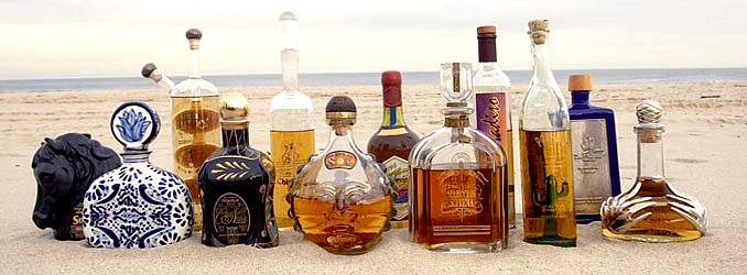Click image for larger version  Name:tequilasummer05.jpg Views:71 Size:199.4 KB ID:48222