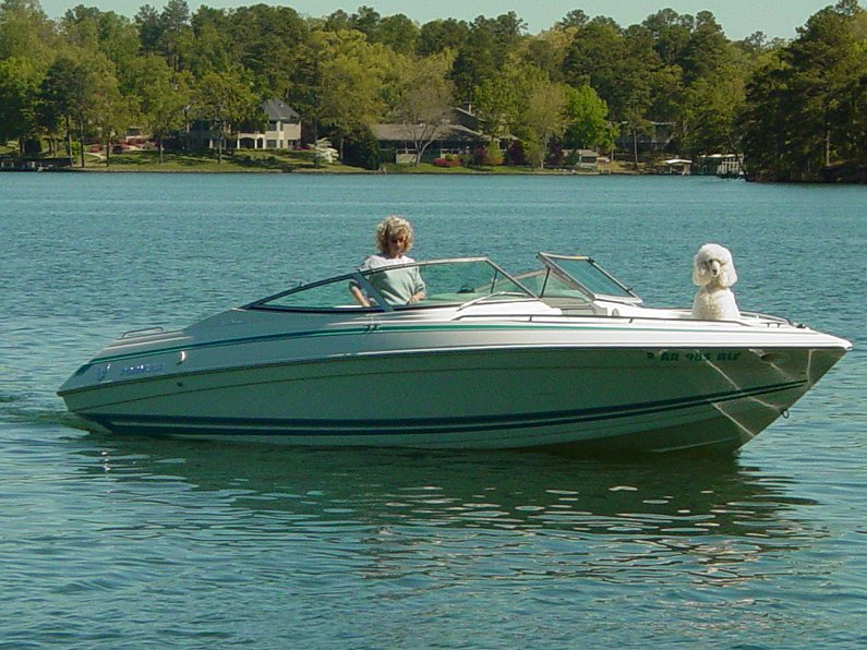 Click image for larger version  Name:Woman & poodle in boat.JPG Views:76 Size:127.3 KB ID:48795