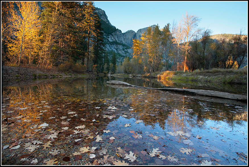 Click image for larger version  Name:Reflected Leaves.jpg Views:101 Size:234.1 KB ID:49211