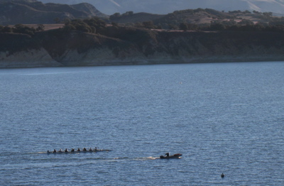 Click image for larger version  Name:Rowers Close up.jpg Views:71 Size:54.4 KB ID:49546