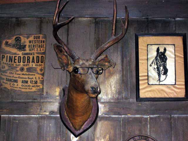 Click image for larger version  Name:stuffed deer head.jpg Views:57 Size:53.3 KB ID:49586
