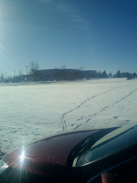 Click image for larger version  Name:WBViewBozemanCampusField.jpg Views:77 Size:48.3 KB ID:49806