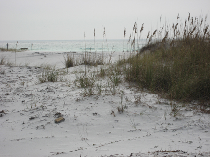 Click image for larger version  Name:2Topsail-12-07.jpg Views:64 Size:124.6 KB ID:50325