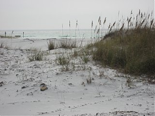 Click image for larger version  Name:2Topsail-12-07.jpg Views:78 Size:124.6 KB ID:50325