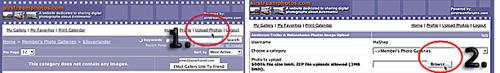 Click image for larger version  Name:uploadpicsbutt.jpg.jpg Views:339 Size:45.3 KB ID:5039