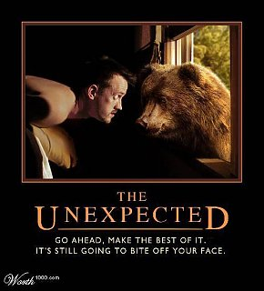 Click image for larger version  Name:The Unexpected.jpg Views:173 Size:32.4 KB ID:50829