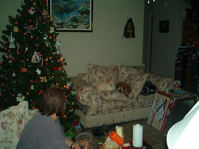 Click image for larger version  Name:Cookie and baby christmas.jpg Views:59 Size:59.2 KB ID:51055