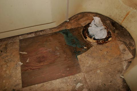 how to clean mold from toilet tank