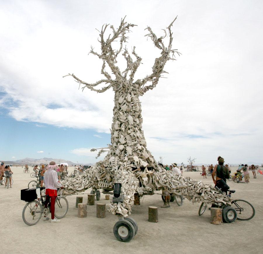 Click image for larger version  Name:IMG_7550 bone tree.jpg Views:116 Size:171.0 KB ID:52557