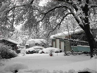 Click image for larger version  Name:Feb 2007 Snowstorm backyard small.jpg Views:101 Size:52.1 KB ID:52759