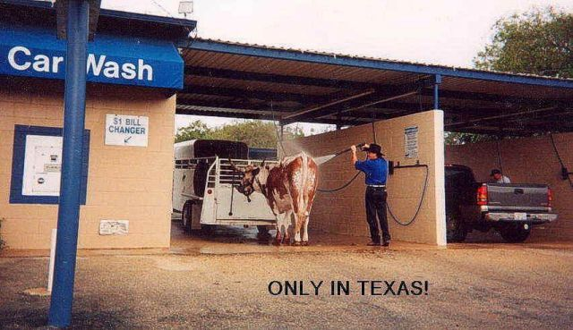 Click image for larger version  Name:only in Texas.jpg Views:78 Size:58.0 KB ID:53956
