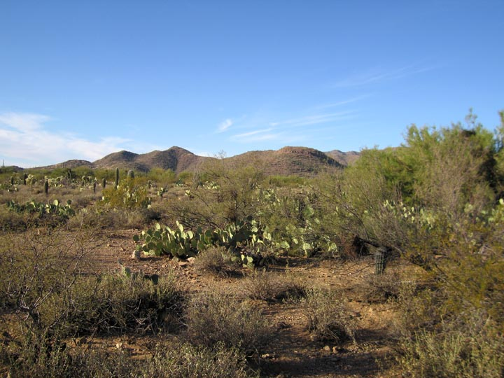 Click image for larger version  Name:Desert_1_GRay Nov05_Sm.jpg Views:64 Size:116.4 KB ID:54030