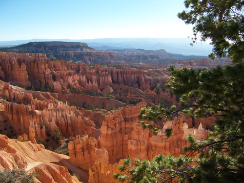 Click image for larger version  Name:Bryce.jpg Views:92 Size:134.0 KB ID:55164