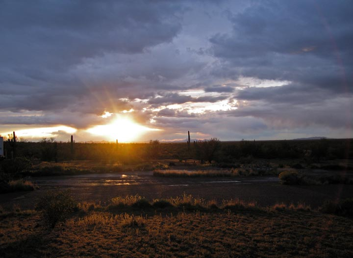 Click image for larger version  Name:Picacho_Mar08_64_Sm.jpg Views:79 Size:69.7 KB ID:56910