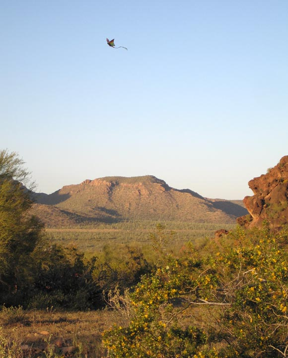 Click image for larger version  Name:Picacho_Mar08_Kite_02_Sm.jpg Views:80 Size:102.0 KB ID:56915