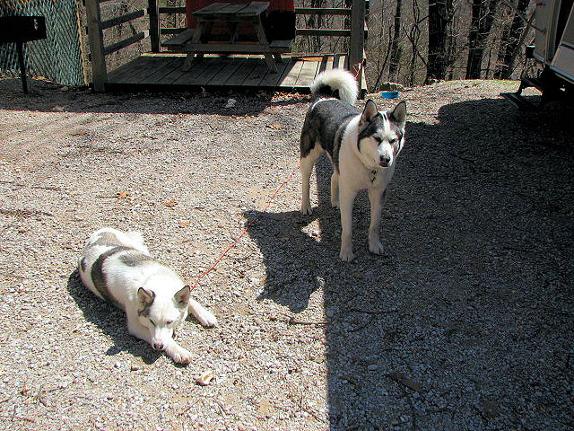 Click image for larger version  Name:Avery & Abita.JPG Views:91 Size:160.6 KB ID:57743