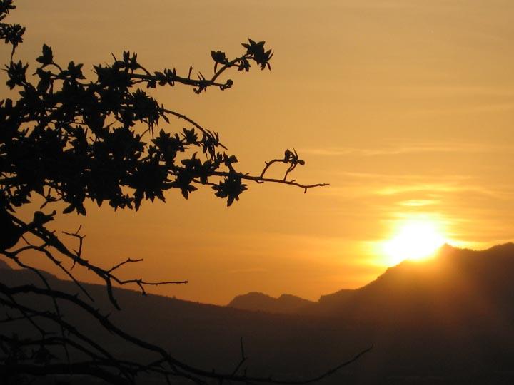 Click image for larger version  Name:Prescott_Apr08_Sunset_02_Sm.jpg Views:67 Size:72.0 KB ID:59172