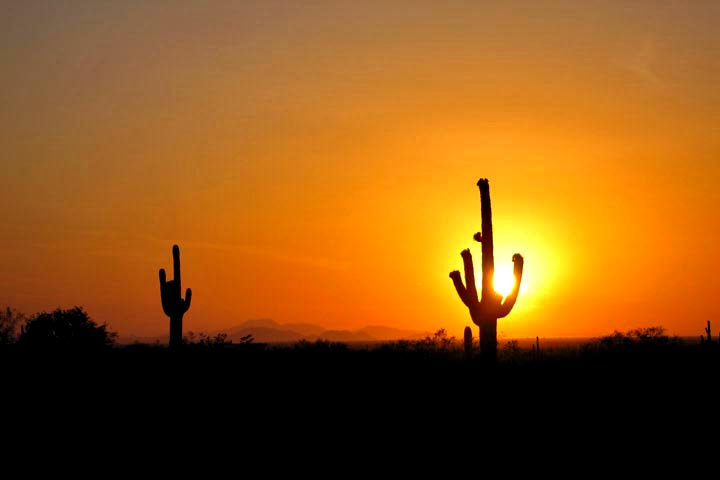 Click image for larger version  Name:Picacho_Apr08_Sunset_01_Sm.jpg Views:69 Size:44.0 KB ID:59173