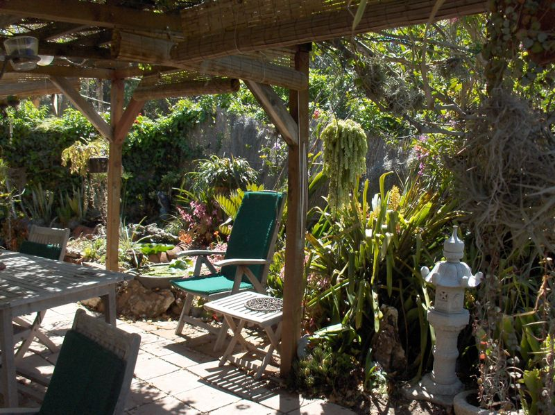Click image for larger version  Name:Southeast backyard '08.jpg Views:57 Size:136.3 KB ID:59785
