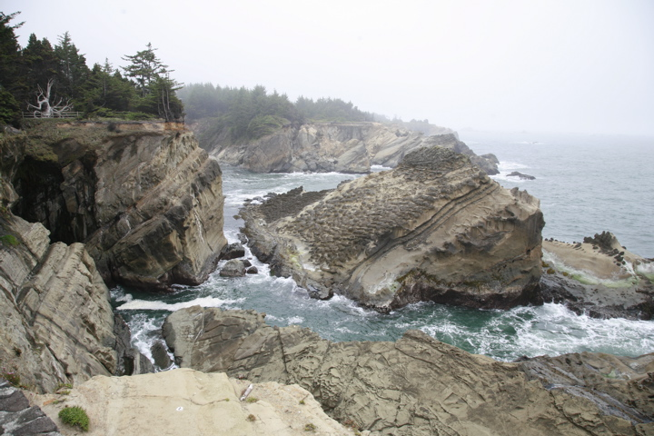 Click image for larger version  Name:Oregon coast view.jpg Views:85 Size:187.7 KB ID:60080