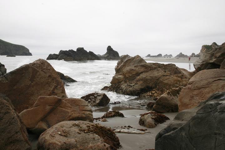 Click image for larger version  Name:Oregon.jpg Views:77 Size:146.6 KB ID:60154
