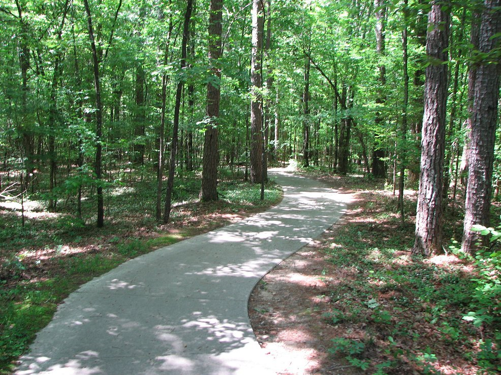Click image for larger version  Name:River trail 5-11-08.jpg Views:56 Size:297.7 KB ID:60408