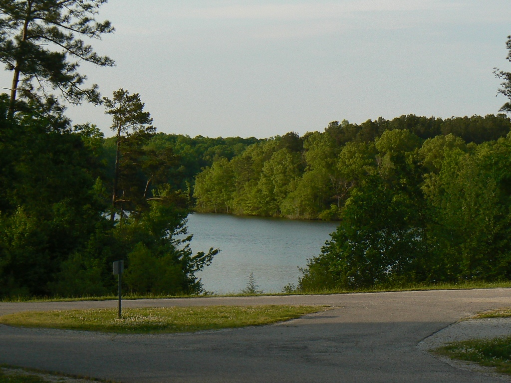 Click image for larger version  Name:view from trailer at Natchez trace TN.JPG Views:92 Size:356.0 KB ID:60813