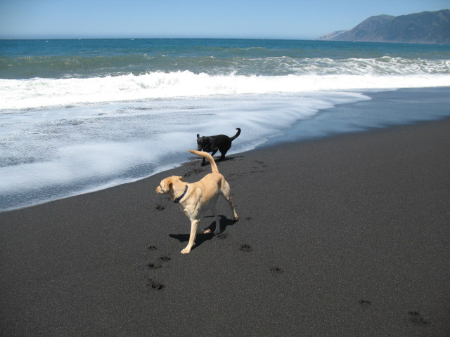 Click image for larger version  Name:Black Beach to Crater lake 001.jpg Views:76 Size:97.8 KB ID:62402