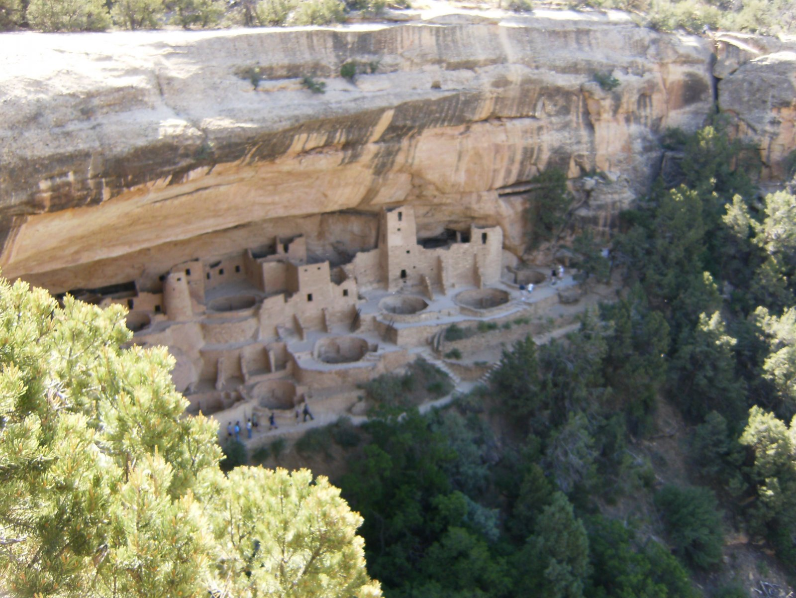 Click image for larger version  Name:cliffpalace.jpg Views:65 Size:315.1 KB ID:63129