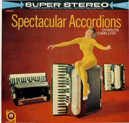 Click image for larger version  Name:accordian.jpg Views:72 Size:81.7 KB ID:64749