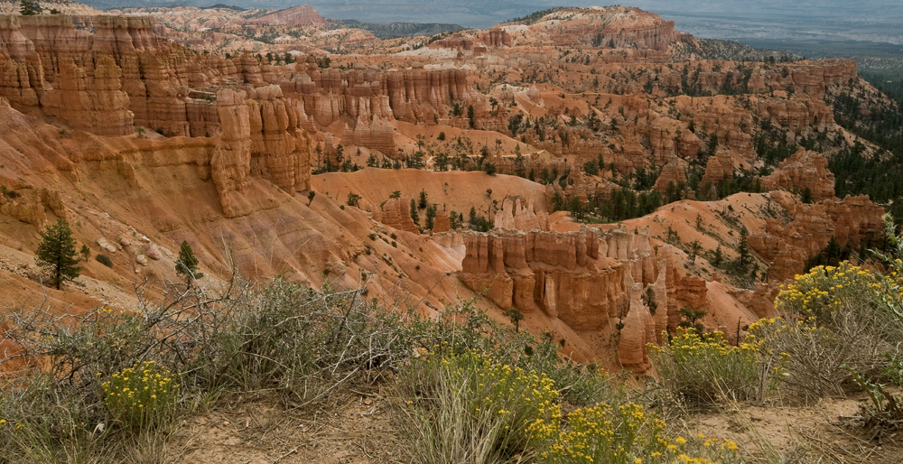 Click image for larger version  Name:Bryce Canyon 1 web.jpg Views:86 Size:658.5 KB ID:64939