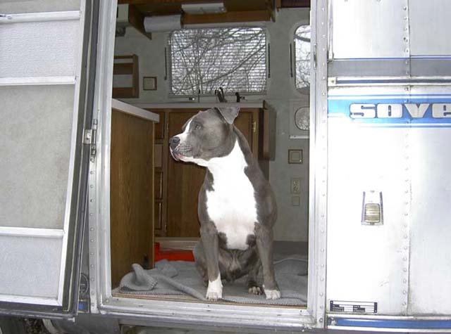 Click image for larger version  Name:Airstream_0008klein.jpg Views:304 Size:53.2 KB ID:6601