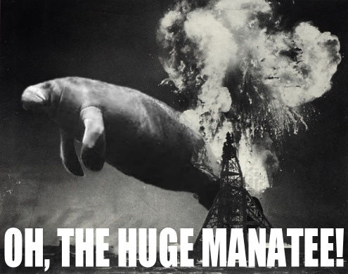 Click image for larger version  Name:huge-manatee.jpg Views:77 Size:39.3 KB ID:66649