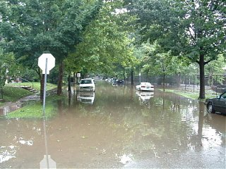 Click image for larger version  Name:Flooded Alfred.JPG Views:170 Size:82.8 KB ID:6854