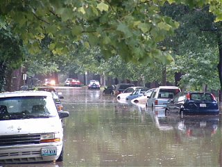 Click image for larger version  Name:Washed away cars on Alfred.JPG Views:157 Size:74.7 KB ID:6855