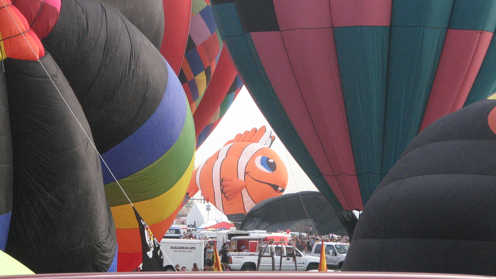 Click image for larger version  Name:fish.jpg Views:72 Size:837.4 KB ID:69167