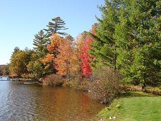 Click image for larger version  Name:Adirondack Leaf Peep'n October 2008 010.jpg Views:81 Size:588.7 KB ID:69672