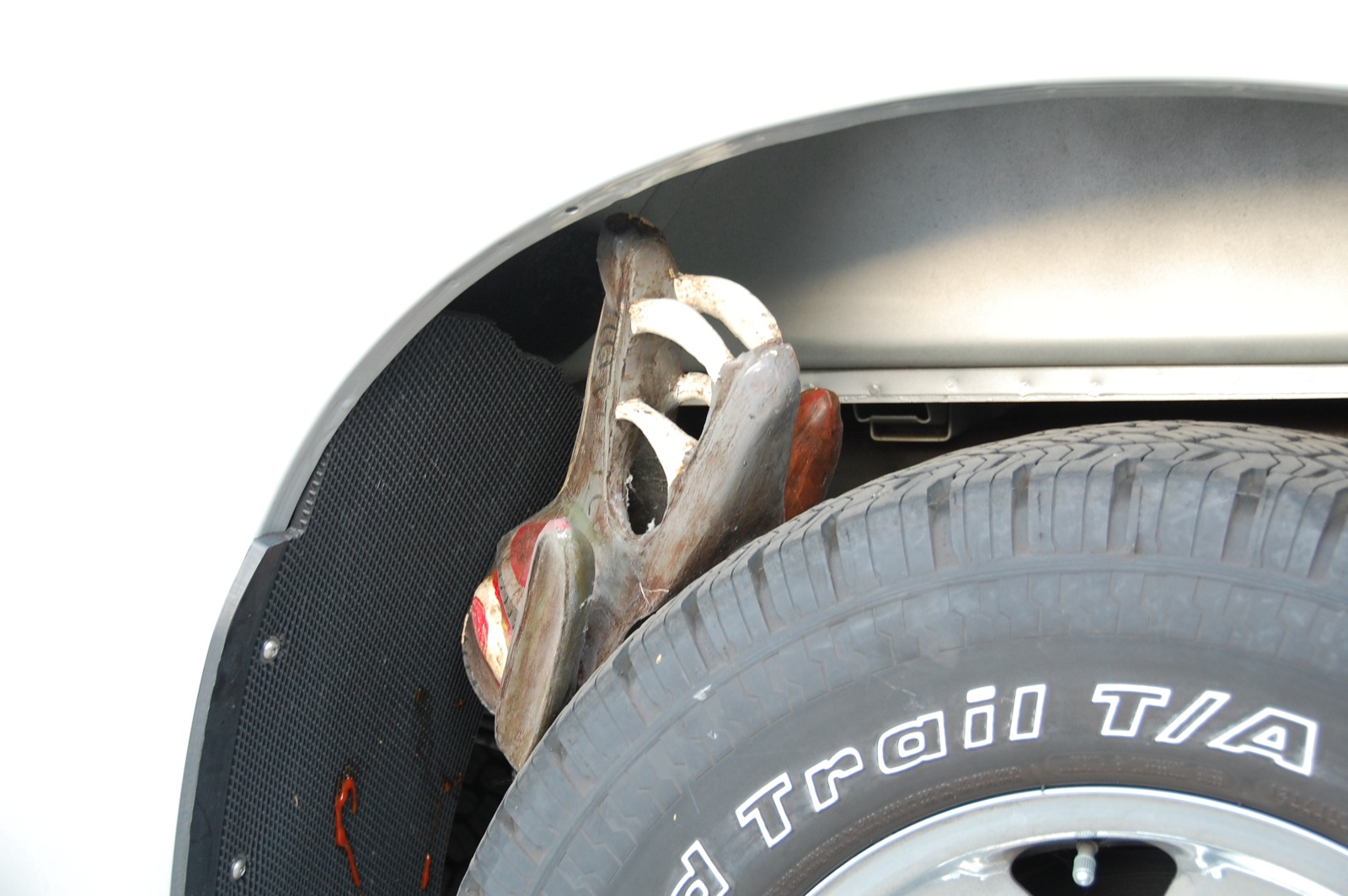 Click image for larger version  Name:DSC_0076 stuck head.jpg Views:80 Size:282.0 KB ID:70593