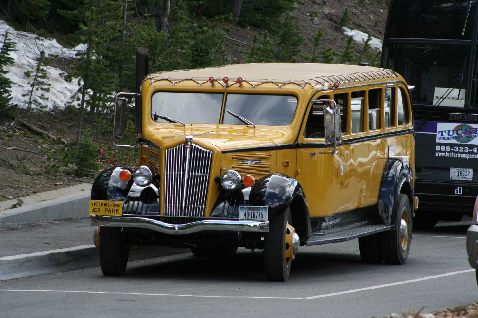 Click image for larger version  Name:Big Yellow Bus Yellowstone National Park.jpg Views:129 Size:165.3 KB ID:71076