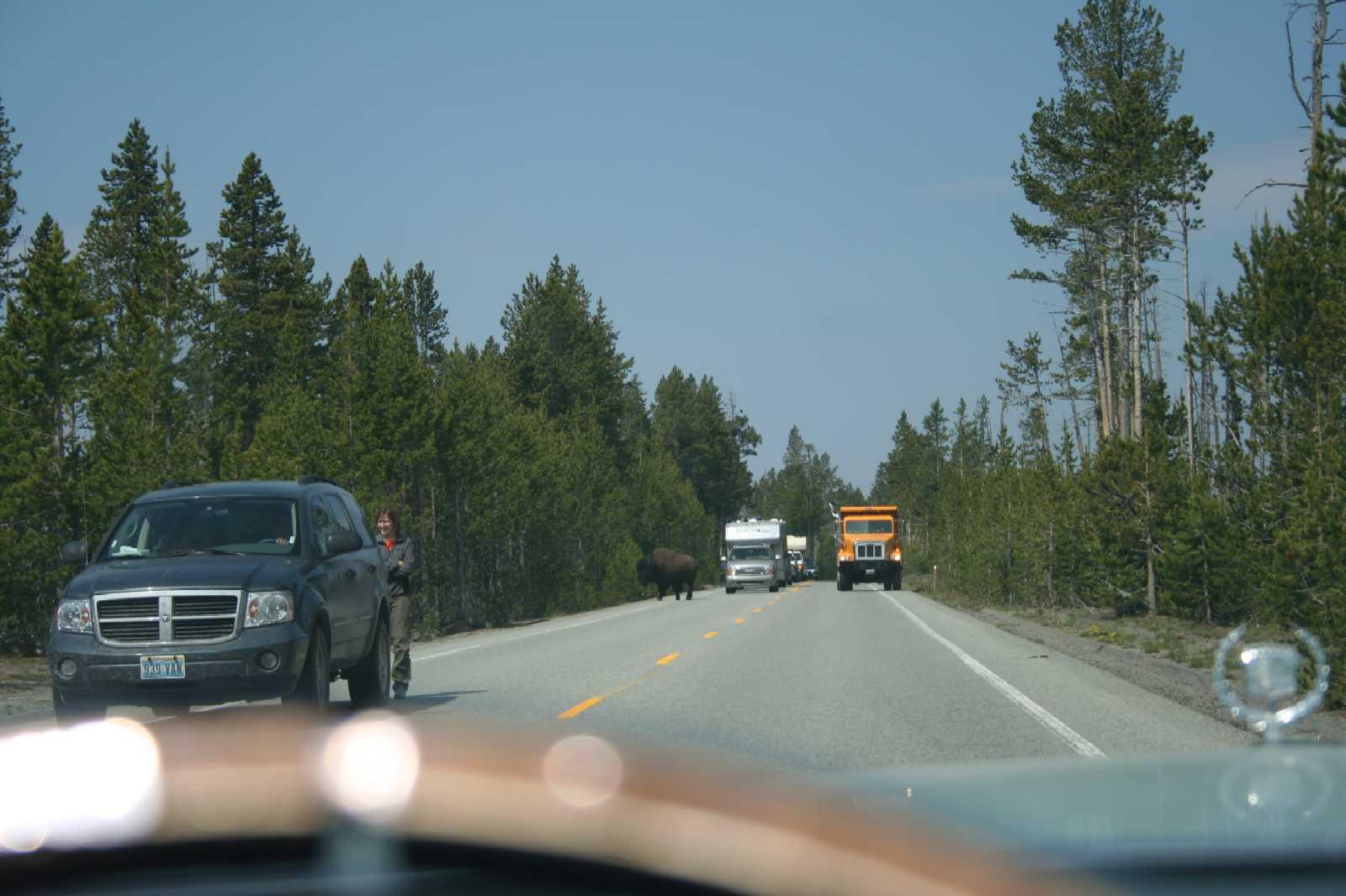 Click image for larger version  Name:Buffalo Traffic Block.jpg Views:137 Size:117.9 KB ID:71079