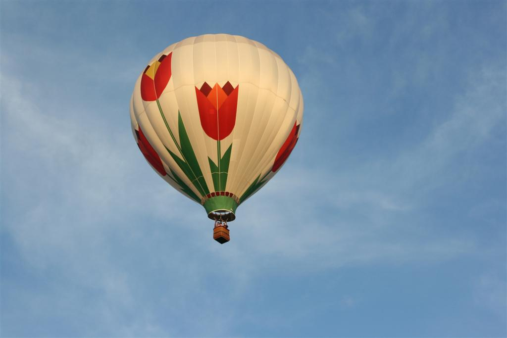 Click image for larger version  Name:2008 Balloon Fiesta 090 (Large).jpg Views:75 Size:40.1 KB ID:71575
