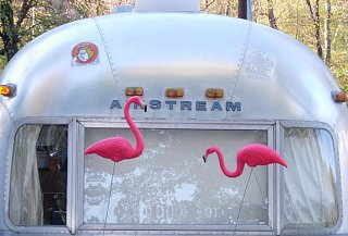 Click image for larger version  Name:Airstream Wildlife.JPG Views:107 Size:36.0 KB ID:72079
