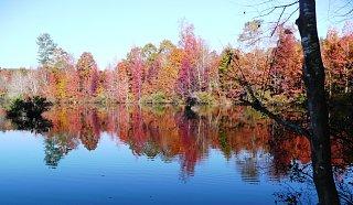 Click image for larger version  Name:Fall at the Lake.jpg Views:97 Size:332.7 KB ID:72776