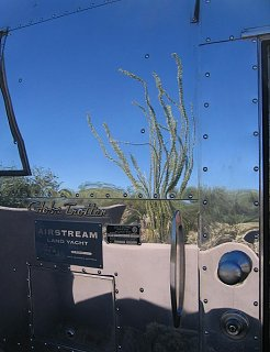 Click image for larger version  Name:cactus1.jpg Views:98 Size:51.3 KB ID:72883