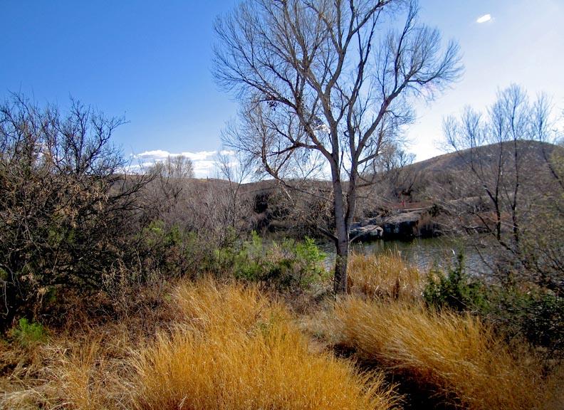 Click image for larger version  Name:Patagonia_Jan09_17_Sm.jpg Views:55 Size:177.5 KB ID:75270