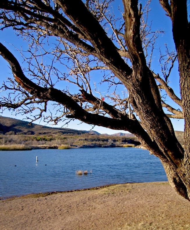 Click image for larger version  Name:Patagonia_Jan09_33_Sm.jpg Views:56 Size:213.7 KB ID:75277