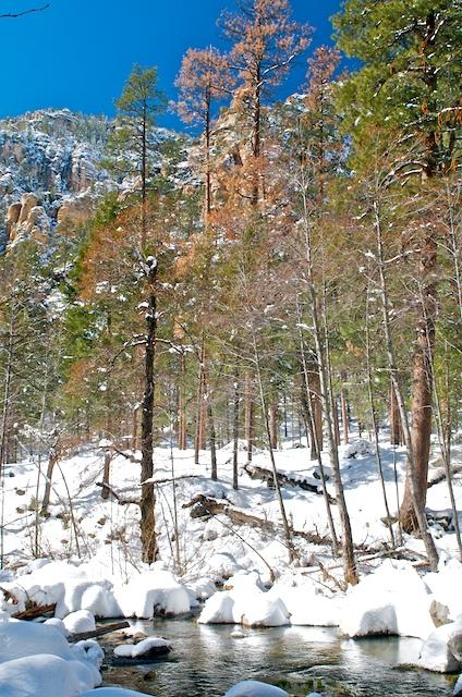 Click image for larger version  Name:Oak Creek Canyon 23.jpg Views:61 Size:232.8 KB ID:75658