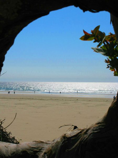 Click image for larger version  Name:pismo beach march 2009 [800x600].jpg Views:76 Size:42.7 KB ID:76601
