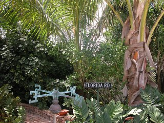 Click image for larger version  Name:just NE of Florida Rd..jpg Views:73 Size:619.5 KB ID:77703
