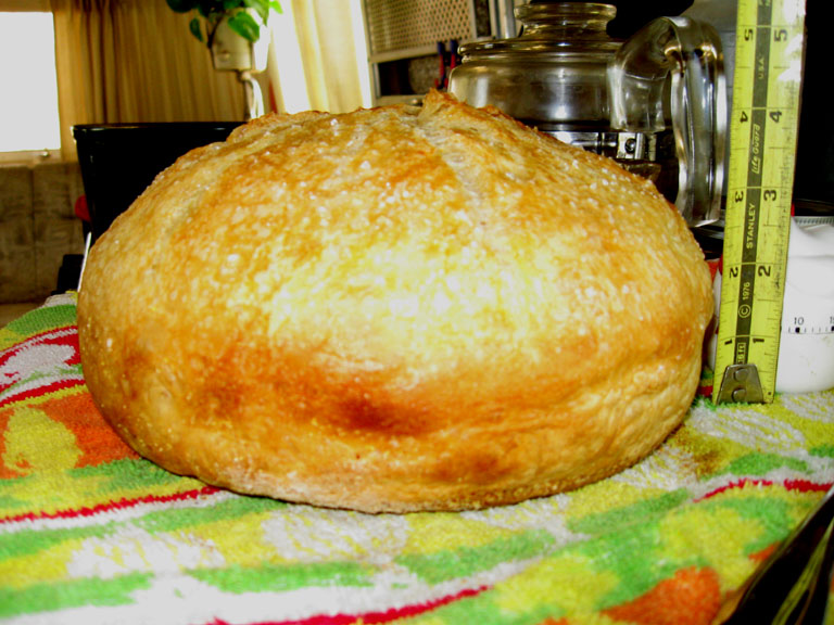Click image for larger version  Name:bread2.jpg Views:77 Size:113.8 KB ID:78554